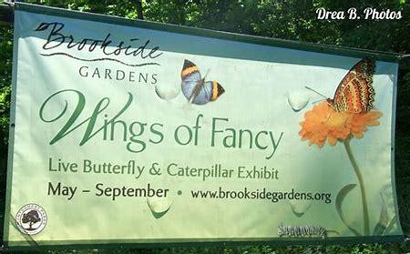 Brookeside gardens